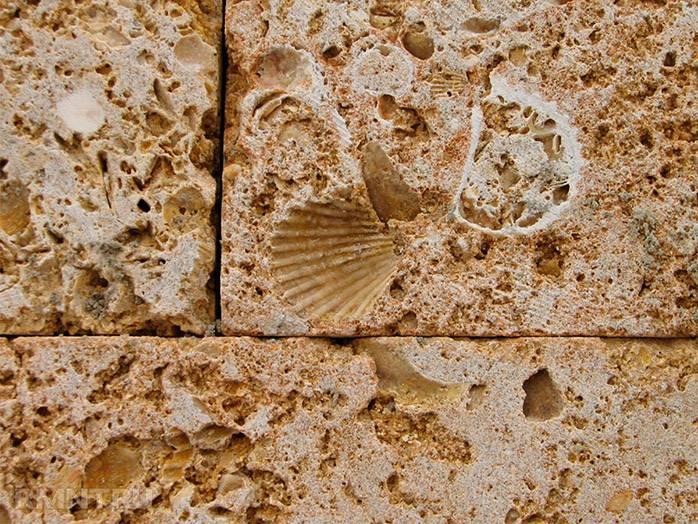 Камни на участке фото дизайна