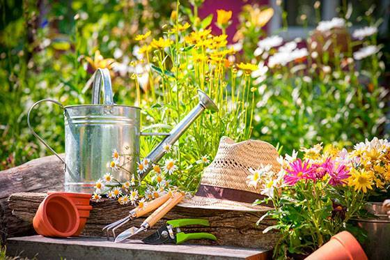 Садовая на английском
