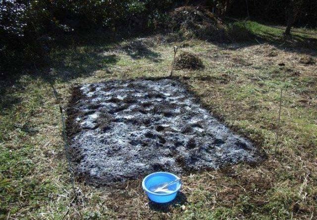 Как известковать почву весной