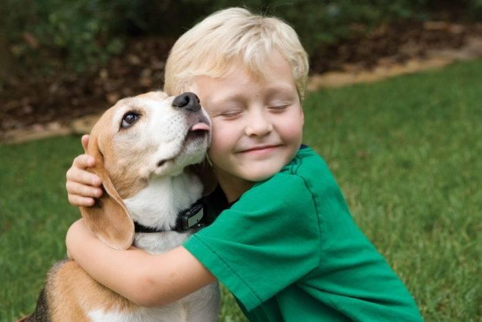Породы собак которые могут жить на улице