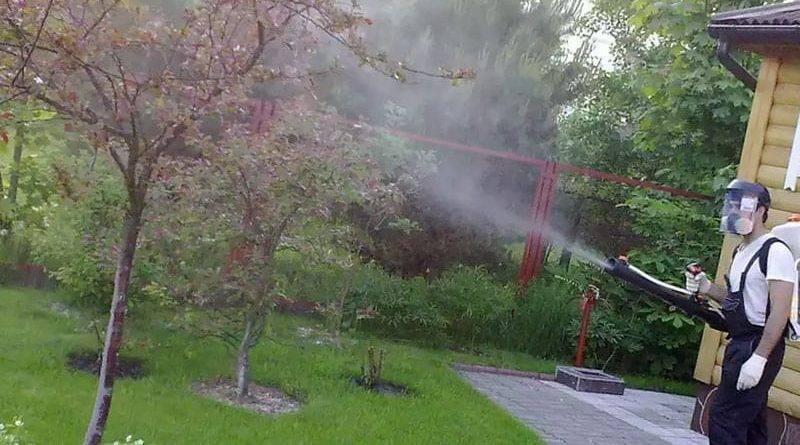 Бордосская жидкость применение в садоводстве осенью