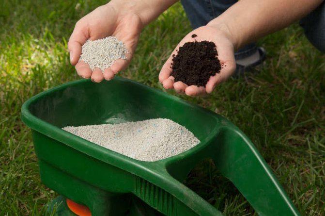 Влияние азотных удобрений на растения