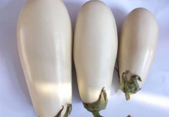 Баклажаны без семян сорта