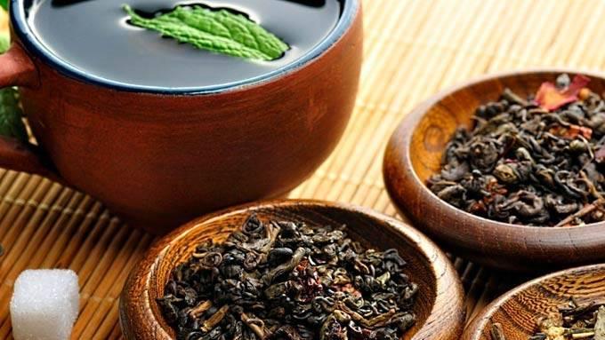 Чайная заварка как удобрение для цветов